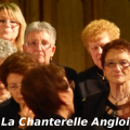 chanterelle-angloise-002