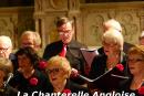 chanterelle-angloise-004