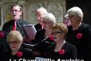 chanterelle-angloise-005