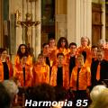 harmonia85-002
