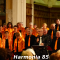 harmonia85-003