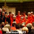 harmonia85-005