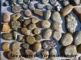galets-VirginieWonder-01