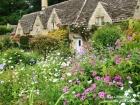 fleurs et maisons